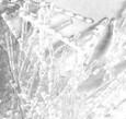 Ίνες Πολυπροπυλενίου